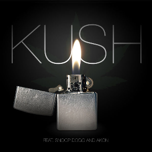 Dr. Dre feat. Snoop Dogg & Akon - Kush (Single) 2010