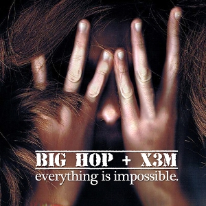 Big Hop & X3M - Everything Is Impossible (2010)